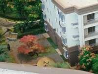 出售馨领域6室2厅4卫317平米150万住宅