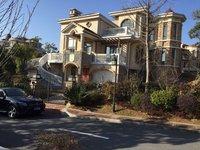出售黄山纳尼亚小镇8室2厅3卫365平米面议住宅