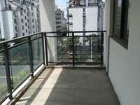 桑园大三房 户型方正 采光极佳 三个大阳台 简单装修
