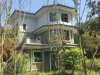 桃花源独栋别墅超大院子300.可扩大100平米