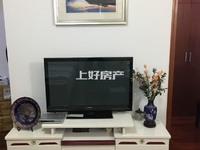 新安桥头精装单身公寓出租,面积大,可做饭租金低!!