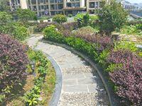 景徽国际 三房带500平方大露台 建造私人空中花园 随时看房体验