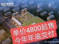 出售翼天 天悦广场37平米21万写字楼