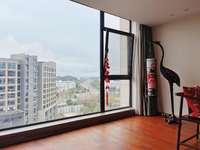 单身贵族首选 栢悦居豪装公寓 真正的拎包入住 电梯好楼层 全天阳光 超大落地窗