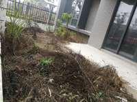禧园 多层花园洋房 边套带30平院子 架空毛坯二房随意装修