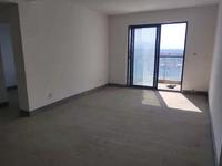 江南新城高层三室两厅两卫景观纯毛坯房出售