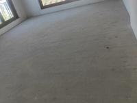 出售远洋桃花岛5室3厅2卫270平米600万住宅