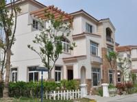 碧桂园 12月 新房 双拼别墅 双拼卖联排的价格 降价急售