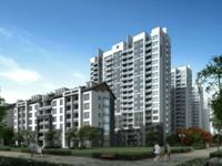 II 新巢房产 II 栢悦南山 最高性价比一套 户型好无遮挡!