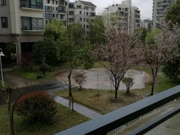 江南新城红枫苑 屯溪六中学区房