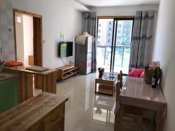 元一大观精装单身公寓出租,正规一室一厅,拎包即住,高端小区!