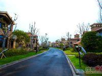 桃花岛欧式独栋 院子700平朝上 独门独户 房东诚售 随时看房!