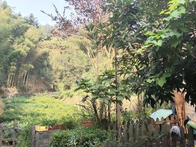 香山翠谷2房,带院子,精装修自住,满2年,领包入住,小区环境好