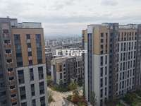 玉兰轩电梯平顶复式楼,带朝南露台,带产权车位,买一层送一层,使用面积198平