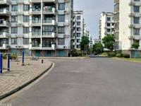 出售隆凤新村 3室2厅2卫实用面积154平米复式楼,赠送9平米柴间,70万住宅