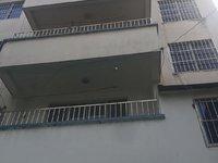 市中心 阜上村自建房 整体使用面积500平左右 可做仓库 办公 看房随时