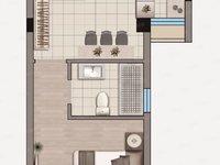 出租翼天 天悦广场1室1厅1卫48.37平米1000元/月住宅