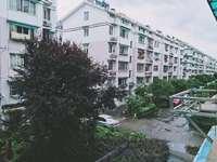 出租城东花园3室2厅2卫148平米1699元/月住宅