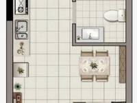 出租翼天 天悦广场1室1厅1卫38平米500元/月住宅