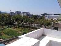 出租泰丰花园3室1厅1卫80平米960元/月住宅