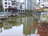 出租东方丽景2室2厅1卫90平米1300元/月住宅