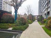 市中心新小区栢悦山,毛坯大三房,南北通透,电梯好楼层,7米大阳台,超大使用空间
