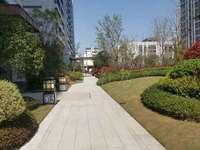 栢悦山市中心火腿心位置 大四房 小区人车分流