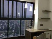 阳湖精装单身公寓,双学区,拎包入住,电梯楼层好,视野宽阔
