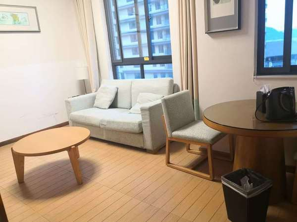 元一大观 产证面积54平 一室一厅一厨一卫 南北通透户型 精装修 提包入住
