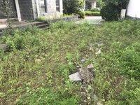 屯溪唯一岛屿小区桃花岛双拼别墅 院子有近200平米 小区环境鸟语花香
