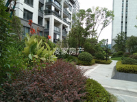 栢悦南山,六中学区,花园稀缺庭墅,带子母车库,带花园,大四房,布局合理,动静分离