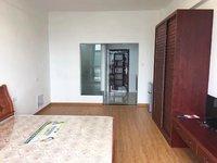 新!好房急租 金太阳大厦一室一厅单身公寓78平米 精装修 拎包即住 家电齐全