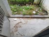 黎阳9小4中学区栢景4期。稀缺一楼带院子,毛坯3房,满2年