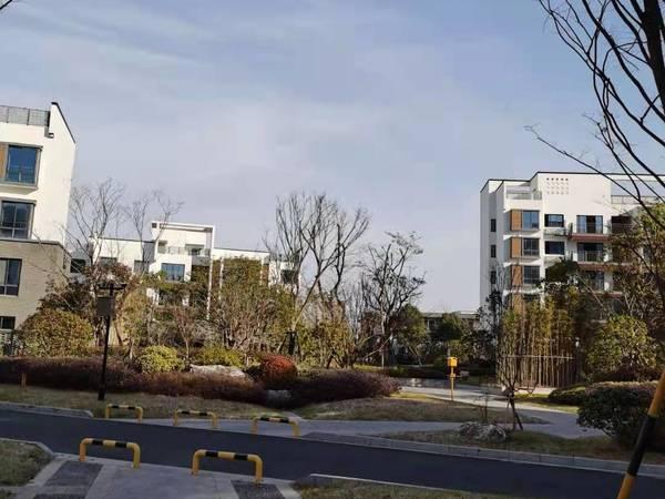 黎阳星雨华府:高品质新小区,经典两房,南北通透,四中学区,房东诚售