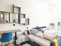 岸上蓝山,年轻人装修的单身公寓,实用面积45平方,租金高