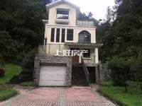 城东独栋别墅,单价8450,满2年,带车库,带露台,超高性价比