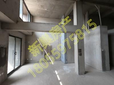 II 新巢房产 II 桃源里 多层带电梯 复式 大阳台 朝南大露台 送字母双车位