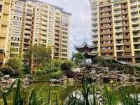 东方雅苑 品质叠屋 景观小高层 面积117-132平 实用面积168平 一手现房