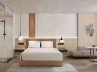 中科志宸高新区一中旁投资理财让你月月收租无忧做房东精装交付随时看房