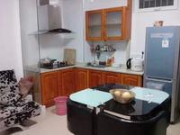 碧桂园 精装修 公寓 租金1100元每月