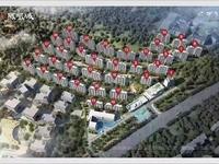 碧桂园凤凰城品质大盘南北通透前后双阳台性价比超高改善型住宅