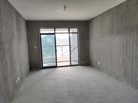 新安印象3室2厅 南北通透双阳台 高层前排江景房 抢手资源随时看房