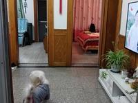 出售阀门厂宿舍2室2厅1卫73平米70万住宅