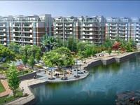 阳湖片新安桥头阳光绿水单身公寓家具家电齐全拎包入住